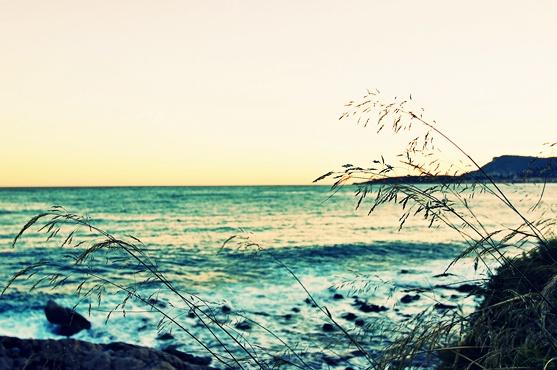 iliguria_spiaggia_uova_009