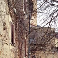 Castelvecchio di Rocca Barbena – 176 abitanti (di cui uno cinese) e un cane