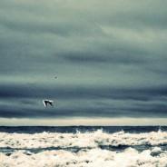 Liguria – le mareggiate di inizio inverno