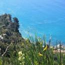 Loano – metti un trentino al mare